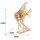 SKALAR ANGLE FISH  3D Holzpuzzle TG273